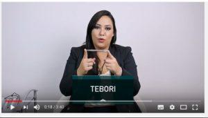 手彫りをTeboriとして紹介する動画
